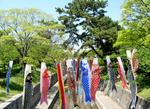 35th-shukugawa.jpg